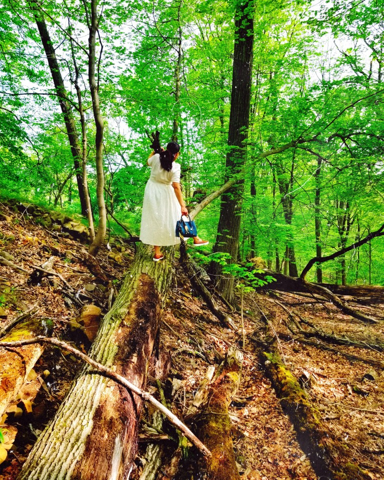 Brunette in white dress and cognac leather sneakers poses ballet-like on fallen molding tree trunk.